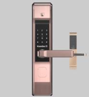 安宁凯迪仕智能锁,安宁换锁